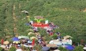 Du khách nườm nượp đổ về thung Nà Ka xem hội hái mận