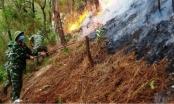 Quân khu 4 tham gia chữa cháy rừng ở Nghệ An
