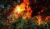 Tiếng khóc xé lòng tiếc thương người phụ nữ tử vong khi tham gia chữa cháy rừng
