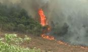 Cháy rừng dữ dội ở Quảng Bình, gần 500 người dồn sức dập lửa