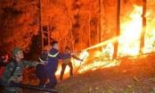 Cháy rừng Hồng Lĩnh và thức tỉnh