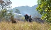 Kịp thời dập tắt vụ cháy rừng tại Sơn Trà