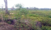 Vụ tranh chấp đất ở Phú Quốc, Kiên Giang: Trả lời của VKSND Tối cao