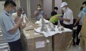 Cảnh báo ma túy 'tuồn' vào Việt Nam qua đường chuyển phát nhanh