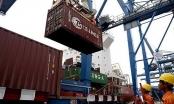 Xuất khẩu của Việt Nam tăng trưởng... ngược chiều thế giới