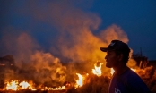 Nhói lòng cảnh Amazon nham nhở hoang tàn trong lửa dữ