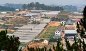 Địa ốc 6AM: Đà Lạt 'ngộp thở' vì nhà kính; Cận cảnh những dự án của IPC bị chuyển sang cơ quan điều tra