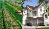 Trình tự chuyển mục đích sử dụng đất từ đất nông nghiệp sang đất phi nông nghiệp