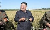 Lộ diện sau 4 tuần vắng bóng, Chủ tịch Triều Tiên Kim Jong-un đã đi đâu?