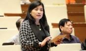 Quốc hội tranh luận chuyện bố trí người tài