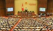 Tuần tới, Quốc hội tiến hành chất vấn và trả lời chất vấn