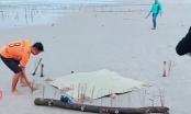 Tá hỏa phát hiện thi thể không đầu, chết bất thường ở biển Quảng Nam