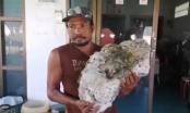 Lang thang nhặt rác trên biển, người đàn ông 'vớ' được gia tài trị giá hơn 16 tỷ đồng