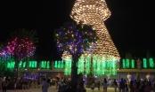 Độc đáo cây thông Noel được làm từ hơn 2 nghìn chiếc nón lá