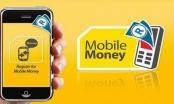 """Phân biệt """"ví điện tử"""" và """"tiền di động"""": Liệu thực sự cần thiết?"""