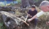 Nhặt khúc gỗ xấu xí vứt ngoài vườn, 5 năm sau mới biết là kho báu hơn 60 tỷ đồng