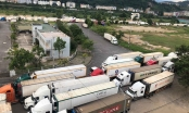 Trung Quốc lùi thời gian mở cửa khẩu đến cuối tháng 2, hàng Việt lại ùn ứ