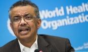 """Lãnh đạo WHO: Virus corona mới gây hậu quả còn """"mạnh hơn"""" cả khủng bố"""
