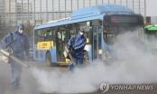 Số ca nhiễm virus corona vọt lên 156, Hàn Quốc khẩn cấp khoanh ổ dịch