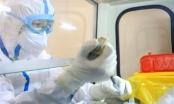 """WHO cảnh báo """"chủng mới của virus Corona rất nguy hiểm"""""""