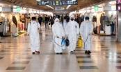 Hàn Quốc: 556 người nhiễm virus corona, 4 người tử vong