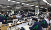 Tin kinh tế 6h30AM: Doanh nghiệp lo 'ế' khẩu trang; Giá vàng bắt đầu phục hồi