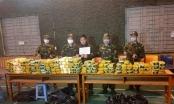 Phá đường dây ma túy xuyên quốc gia, thu giữ gần 450 kg ma túy tổng hợp