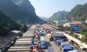 Ùn ứ gần 1.700 xe, đề nghị tạm dừng đưa hàng nông sản lên biên giới