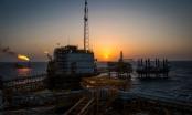 OPEC và các nước đồng minh đạt thỏa thuận cắt giảm sản lượng kỷ lục