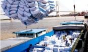 Doanh nghiệp kiến nghị về bất cập trong xuất khẩu gạo