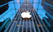 Apple tuyển loạt nhân sự cao cấp tại Việt Nam, chiến lược mới là gì?