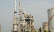 Nữ đại gia Nguyễn Thị Nga đang đầu tư vào xăng dầu ra sao?