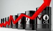 Sau 'thảm hoạ' dưới 0 đồng, giá dầu thô vọt tăng trở lại 