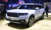 Tin kinh tế 7AM: Hàng trăm mẫu ô tô Trung Quốc đổ bộ vào Việt Nam; Từ đỉnh cao, giá vàng giảm sốc