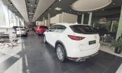Tin kinh tế 6AM: Những mẫu xe nào sắp được giảm 50% phí trước bạ; Chứng khoán phục hồi, giá vàng lao dốc
