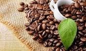 Xuất khẩu cà phê 5 tháng 2020 đạt 1,367 tỷ USD