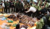 Truyền thông xã hội, báo chí trực tuyến nói không với làm hại động vật hoang dã