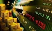 """Vì sao đầu tư Bất động sản vẫn là kênh """"hái ra tiền""""?"""