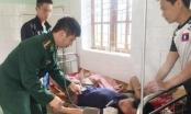 Bài thuốc cấp cứu ngộ độc lá ngón ở miền Tây Nghệ An