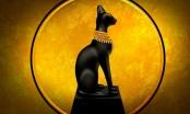 Tín ngưỡng thờ động vật của người Ai Cập cổ đại
