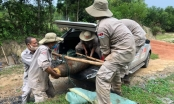 Hướng Hóa (Quảng Trị): Phát hiện và xử lý quả bom nặng hơn 200kg