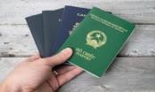 Pháp luật cho phép công dân Việt Nam có 2 quốc tịch trong trường hợp nào?