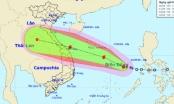 Bão giật cấp 13 - 14 khả năng đổ bộ Quảng Bình - Đà Nẵng, nhiều tỉnh khác mưa to