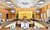 Từ 1/1/2021, hợp nhất Văn phòng Đoàn ĐBQH và HĐND cấp tỉnh