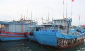 Áp thấp đe dọa 129 tàu cá cùng 3.000 lao động còn hoạt động trên biển
