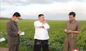 Nhà lãnh đạo Triều Tiên thị sát vùng thiên tai