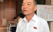 ĐBQH hoan nghênh việc Ca sĩ Thủy Tiên kêu gọi cứu trợ miền Trung