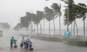 8 việc cần làm ngay để phòng chống dịch bệnh mùa mưa bão