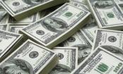 Tỷ giá ngoại tệ hôm nay 27/10: Giá USD trong nước điều chỉnh cao, bật tăng theo đà thế giới