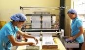 Tháo gỡ vướng mắc ở Nhà máy bao bì Hải Nam